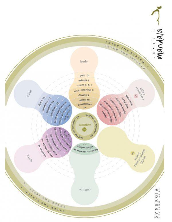 Synergia Level 1 Mandala