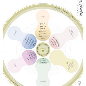 Synergia Level 2 Mandala